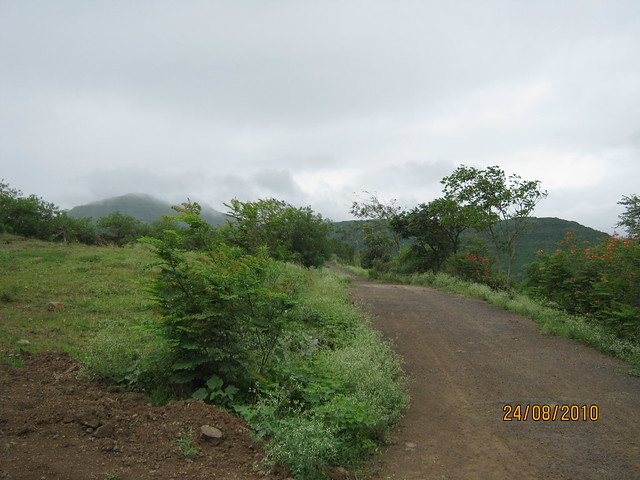 Bungalow Plots at Jambhulwadi & Mangadewadi, Katraj PuneIMG_2476