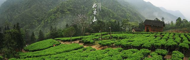 廣西2009