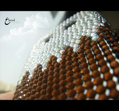 (3    d ) Tags: macro closeup canon doha qatar do7a  qatari    3houd ohoud