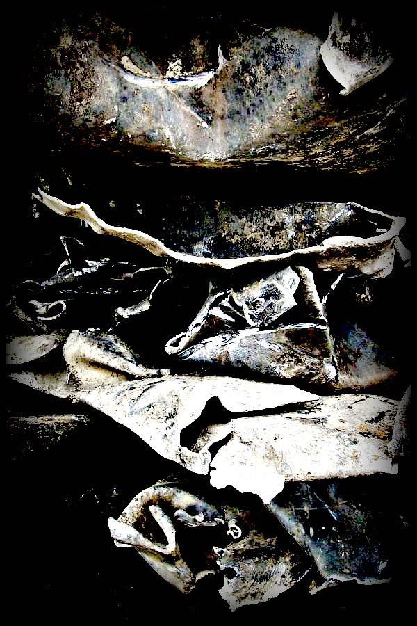 365.219 ~ Disintegration