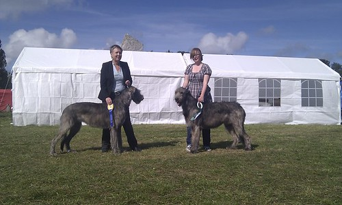 Wicca & Aiax at Gotland Dog Show