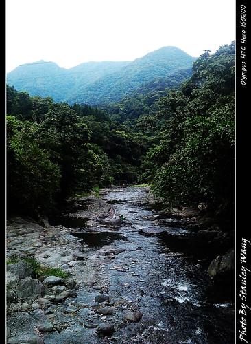 小徑旁的小溪