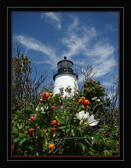 Pemaquid Perspective (Photographic Poetry) Tags: maine boothbay lighthouseseaocean costalmaine