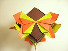 Butterfly-Sonobe