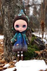 Woodland Pixie (42/365)