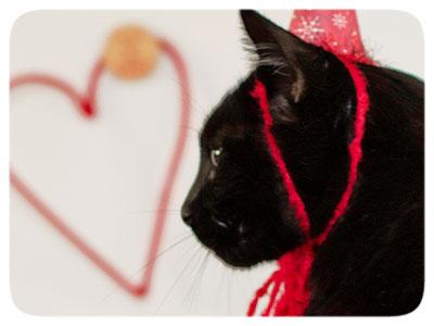 Valentine-Jack-Profile