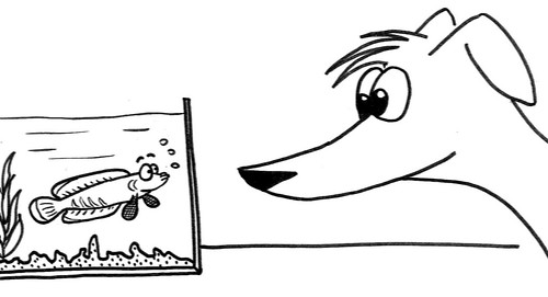 Comic-Whippet meets Snakehead