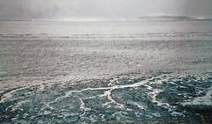 the silence of the sirens (Frau Luna) Tags: ireland sea howth dublin film beach water clouds analog greek seaside lomo lca poetry poem literature shore silence poet homer odyssey franzkafka epic ulysses sirens ancientgreek dunlaoghaire epicpoem autaut thesilenceofthesirens