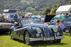 Jaguar XK 140 (<p&p>photo) Tags: 1950s 50s green jaguar xk140 xk 140 classicshow classicvehicleshow thelakesclassicvehicleshow lakesclassicvehicleshow lakescharityclassicvehicleshow thelakescharityclassicvehicleshow the lakes charity classic vehicle show grasmere cumbria england june2017 june 2017 classiccar classiccarshow auto autos autoshow carshow lakedistrict uk englishlakedistrict worldcars