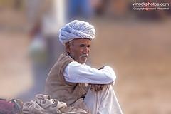 Pushkar Camel Fair (Vinod Khapekar) Tags: india portrait shepherd pushkar rajasthan camel man canon5dmarkii canon