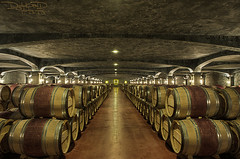 Bordeaux Vineyard: Chateau Smith Haut Lafitte - France [EXPLORED] (DiGitALGoLD) Tags: france vineyard vines nikon raw tour wine barrels country bordeaux 9 smith nikkor chateau cellar hdr d3 haut 2470mm sellar frpix lafittle