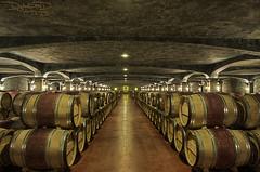 Bordeaux Vineyard: Chateau Smith Haut Lafitte - France [EXPLORED] (DiGitALGoLD) Tags: france vineyard vines nikon raw tour wine barrels country bordeaux 9 smith nikkor chateau cellar hdr d3 haut 2470mm sellar frpix lafittle