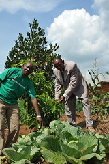 6c. David and the head teacher - the  vegetable garden provides a micro-economy and doubles as an outdoor laboratory  for the school