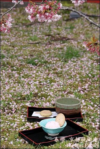 京都 醍醐寺茶會