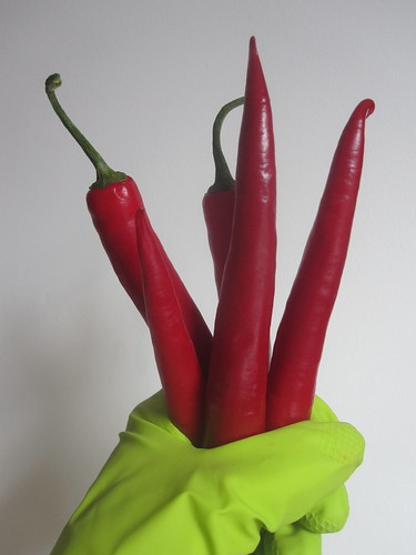Chopping hot peppers: gloves needed