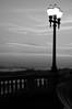 after sunset... (...storrao...) Tags: sunset pordosol blackandwhite bw muro praia beach portugal nikon silhouettes pb sidewalk porto pretoebranco foz passeio candeeiro silhuetas d90 praiadomolhe avmontevideu storrao sofiatorrão nikond90bw