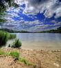 Virginia Waters (Muzammil (Moz)) Tags: lake london water beautiful clouds bluesky vista slough moz virginiawaters vertorama