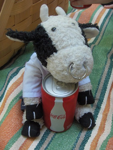 On a hot summer day I like hugging a cold soft drink.