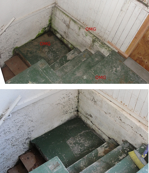 Mudroom interior shots before and during, showing the much less algae, mold, and dirt.