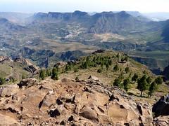 Gran Canaria - Pozo de las Nieves & Surroundings in the Spring