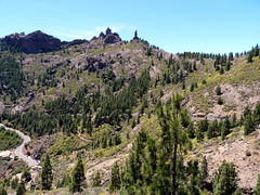 Gran Canaria - Roque Nublo & Surroundings in the Spring