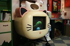 Cat TV in Nekobukuro (sleepyhead's) Tags: japan cat tokyo tv cafe ikebukuro nippon 東京 nihon cattv 東京都 catcafe 日本国 nekobukuro nihonkoku nipponkoku 日本國 catcafé