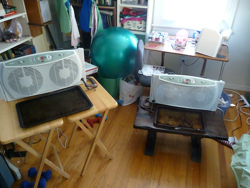 DIY Evaporative Cooling in a Heat Wave