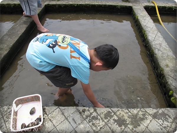 大溪摸硯農場36-2010.06.20