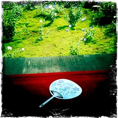 #3 (yocca) Tags: summer flower garden temple fan flora kyoto   3gs 2010 iphone     tentokuin july2010 hipstamatic japaneseroundfan