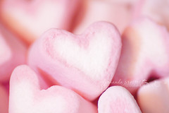 I heart heart heart marshmallows (f. prestes) Tags: pink macro cute yummy heart coraes marshmallow corao romantic feeling 75300mm corderosa gostoso 500d