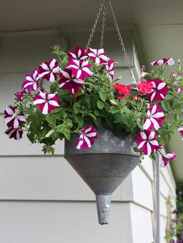 Funnel Planter