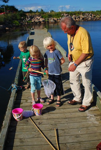 Sommerhustur til Samsø