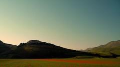 Castelluccio di Norcia - Monti Sibillini (Umbria/Italy) (matteo1981) Tags: papaveri escursionismo montisibillini fioritura castellucciodinorcia lenticchia piangrande