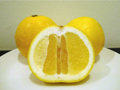Japanese Yellow Oranges