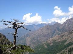 Sentier de Caprunale : les hautes vallées du Fangu (photo Sylvain Guillaumon)