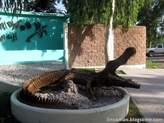 El cocodrilo de la entrada
