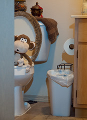 Bobby Jack enjoying some 'Me' time. (IM2_OCD) Tags: toy bathroom monkey doll littlerock toilet olympus arkansas oly bobbyjack e620