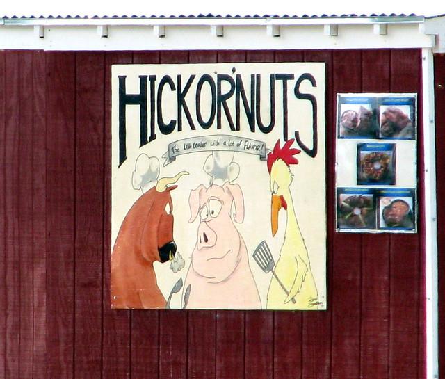 Hickornuts