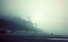 Aller retour (sparth) Tags: blue trees beach fog washington foggy silhouettes july olympicpeninsula trunks peninsula plage 2010 olumpic horizontality