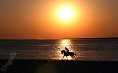 Galopando en la playa (Urugallu) Tags: espaa canon flickr playa andalucia cadiz cai ocaso carreras doana sanlucardebarrameda sanlucar topshots galopando carrerasdecaballos urugallu panoramafotogrfico alfinaldeldia peopleenjoyingnature theoriginalgoldseal andalicai