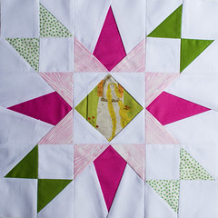 Florida Star for Sara (mintyfreshflavor) Tags: sara sewing quilting blocks fos block45 floridastar twitterbee 60blocksofsummer