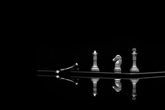 Checkmate - Echec et mat (philippe julien) Tags: blackandwhite bw white black game reflection loss noir noiretblanc background flash chess victory mat reflect boardgame defeat blanc reflets jeu victoire checkmate echec endofgame dfaite echecetmat