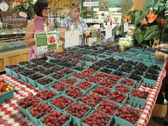 Bauman Berries