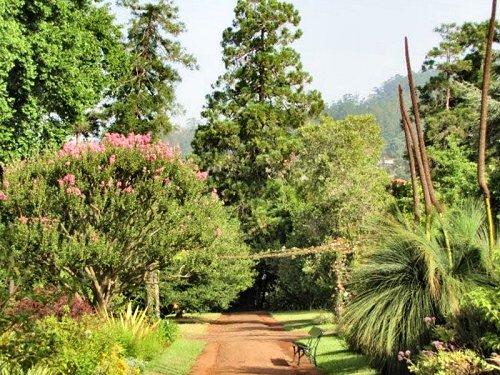 20100804-rq-12-main garden
