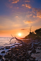 Kohanaiki Sunset (konaboy) Tags: ocean camping sunset tree beach hawaii rocks shore coastline bigisland pinetrees kona 6144 kohanaiki