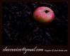 FREINDS / chocovoices / oktavdsaint (RIYADH CHOCO VOICES) Tags: winter brown fall dessert chocolate philippines middleeast tasty manila taste pilipino 2010 applered oktavdsaint sjhon87 chocovoices