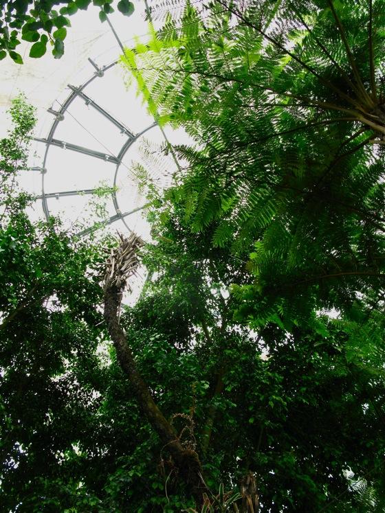 genova sphere 002