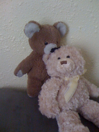 My Old Teddy Bear & Michael's New Teddy Bear