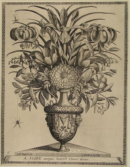 A flore accipias honeste vivere discas (de Bry)