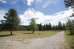 New Life in North Idaho: Front Yard and Driveway